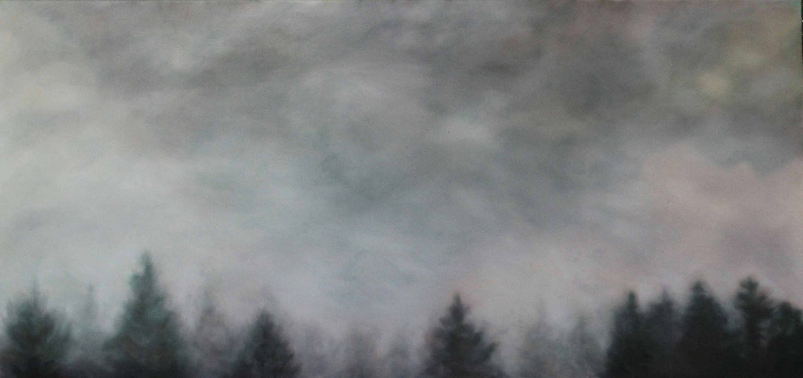 Can't See The Mountains For The Trees - Maria Patrizi
